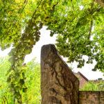 Bild vom Langen Stein in Langenstein Hessen